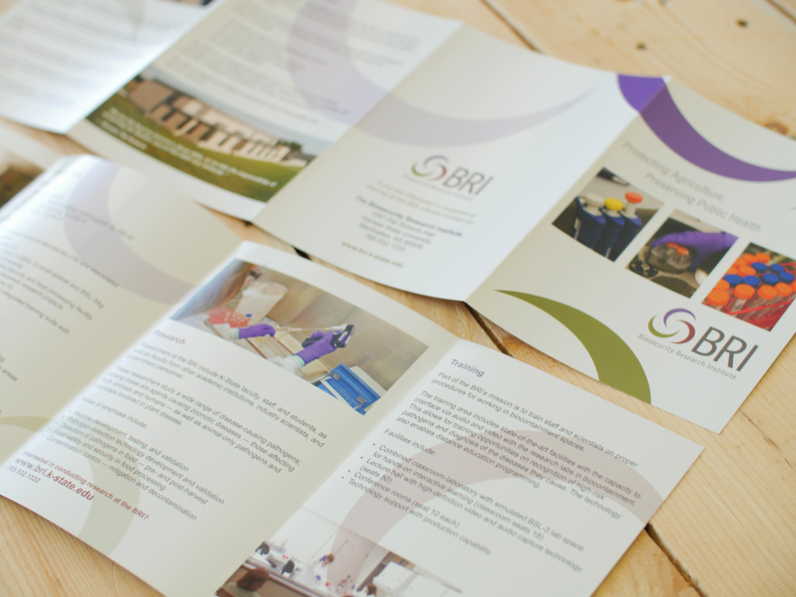 BRI Marketing Portfolio 2