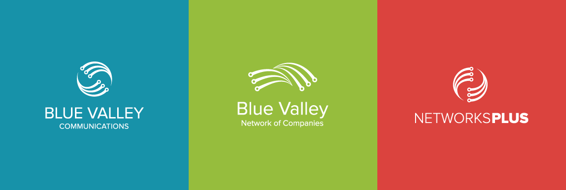 Blue Valley Marketing Portfolio